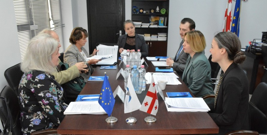 Public Defender Meets with Members of OSCE/ODIHR Delegation