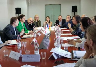 Members of Public Defender's National Preventive Mechanism Meet with German Government's Special Representative