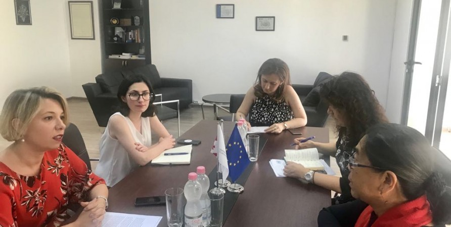 Meeting with UN Special Rapporteur on Human Rights of Internally Displaced Persons