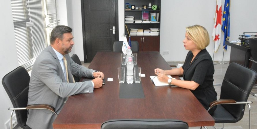 Public Defender's Meeting with Ambassador of the Czech Republic