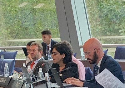Deputy Public Defender Participates in the Meeting of the Committee of Ministers of the Council of Europe