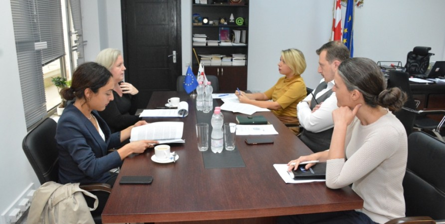 Public Defender Meets with Representatives of OSCE Office for Democratic Institutions and Human Rights