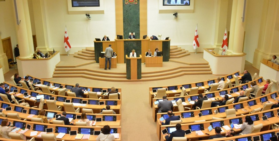 Public Defender Presents the 2018 Report on the Situation of Human Rights at the Parliament's Plenary Session