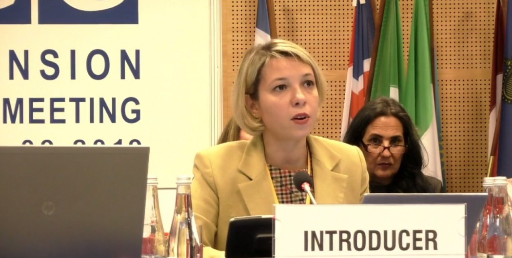 Public Defender's Speech at the Human Dimension Implementation Meeting of OSCE Participating States
