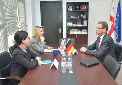 შეხვედრა გერმანიის ფედერაციული რესპუბლიკის ელჩთან