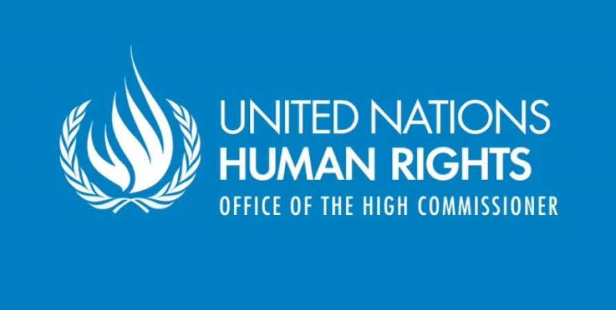 UN CRPD General Comments are available in Georgian