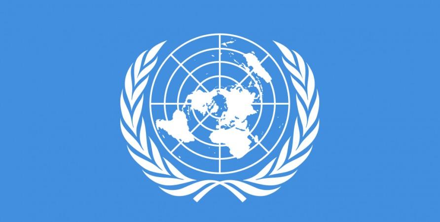 საქართველოს სახალხო დამცველმა გარემოსა და ადამიანის უფლებების საკითხზე გაეროს სპეციალური მომხსენებელი მოიწვია