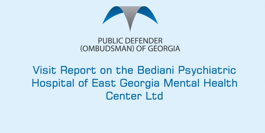 Visit Report on the Bediani Psychiatric Hospital of East Georgia Mental Health Center Ltd