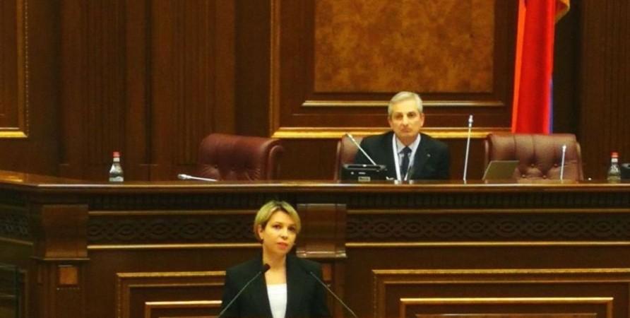 Public Defender's Speech at International Conference in Armenia