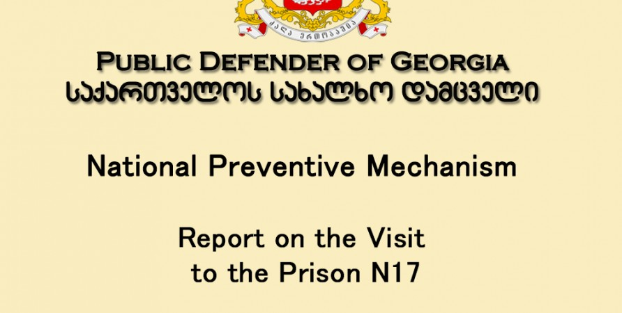 National Preventive Mechanism Report on the Visit to the Prison N17  (1-2 December 2014)