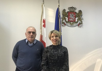 Public Defender Meets with Vazha Gaprindashvili