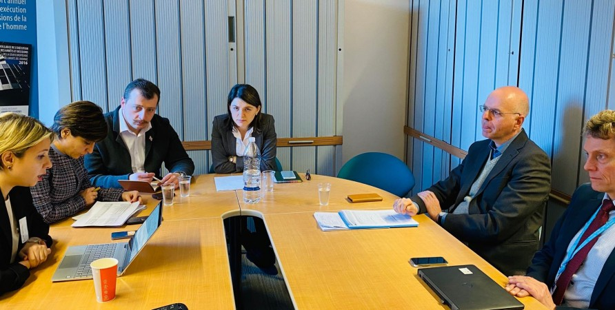 Public Defender Meets with Representatives of European Court's  Department for Execution of Judgments