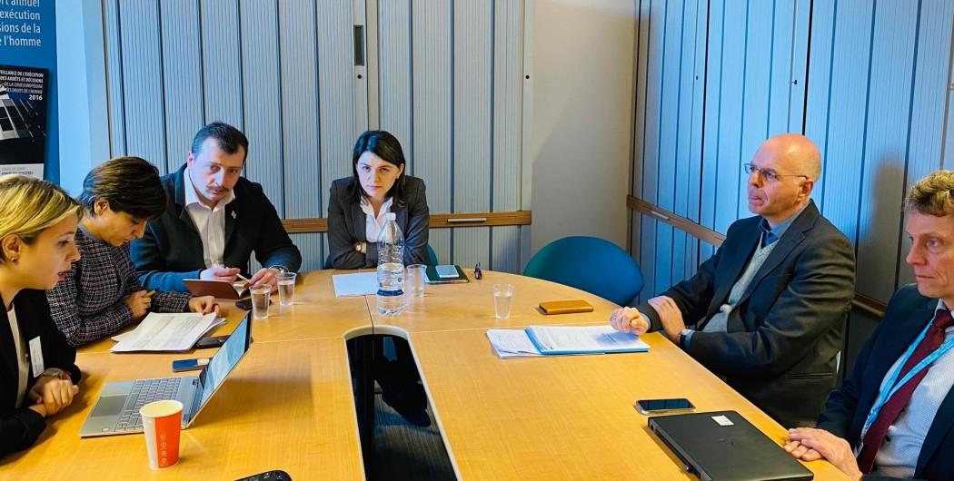 სახალხო დამცველის შეხვედრა ევროპული სასამართლოს გადაწყვეტილებების აღსრულების დეპარტამენტის ხელმძღვანელობასთან