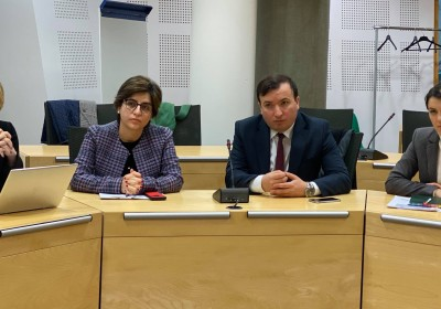 Public Defender's Meeting with Executive Secretary of Council of Europe's Steering Committee on Media and Information Society
