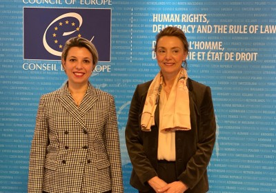 Public Defender's Meeting with Secretary General of Council of Europe