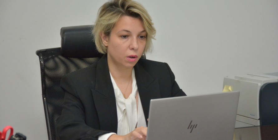 Online Meeting between Public Defender and Head of State Care and Trafficking Agency