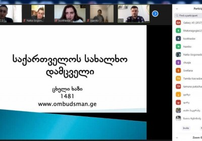 Online Meeting with Specialists of Day Care Centers for Persons and Children with Disabilities