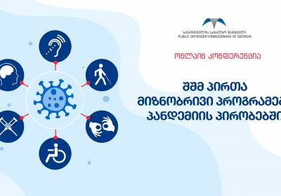 Online Conference on Targeted Programmes for Persons with Disabilities during Pandemic