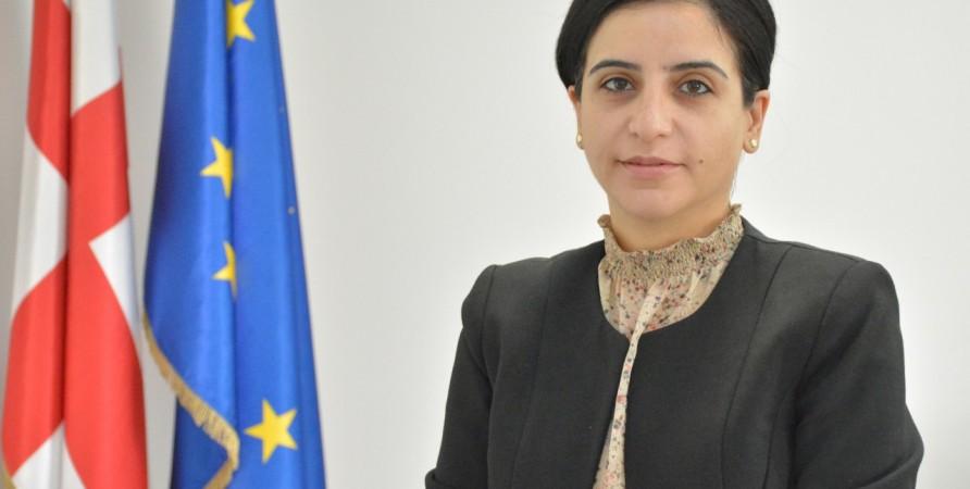 İnsan Hüquqları Evinin tematik hesabatı: Gürcüstanda insan haqları müdafiəçilərinin vəziyyəti - maneələr və problemlər.