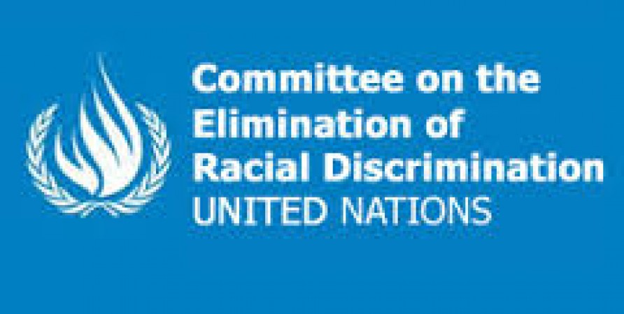 Public Defender of Georgia Submits Alternative Report to UN Committee on Elimination of Racial Discrimination