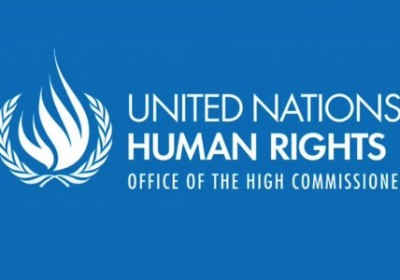 "Submission to the Office of the High Commissioner for Human Rights (OHCHR), pursuant to Human Rights Council resolution 34/37 entitled ""Cooperation wi ..."