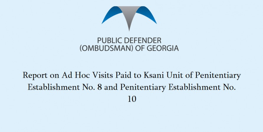 Public Defender's Report on Monitoring Carried out in Penitentiary Establishment No. 10