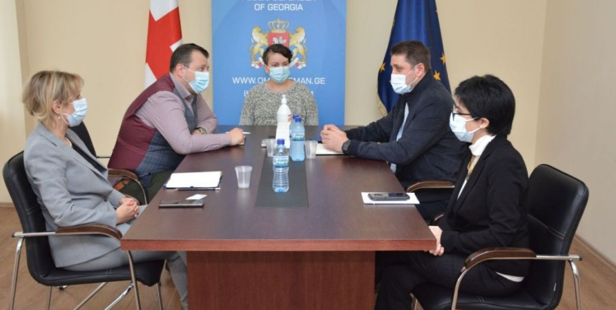 Public Defender Meets with Prime Minister's Human Rights Adviser