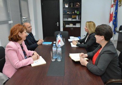 Public Defender Meets with UNICEF Representative in Georgia