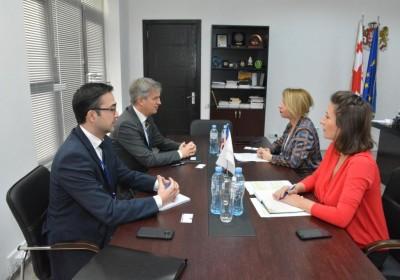 შეხვედრა საქართველოში ევროკავშირის სადამკვირვებლო მისიის ხელმძღვანელთან