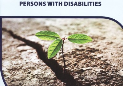 Report on the state of Human Rights in institutions for Persons with Disabilities
