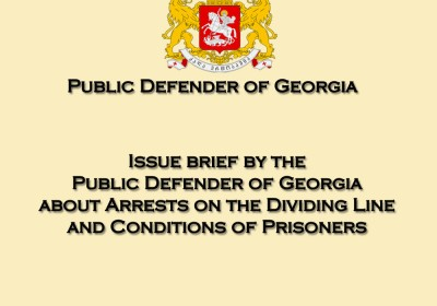 Issue brief by the Public Defender of Georgia about Arrests on the Dividing Line and Conditions of Prisoners