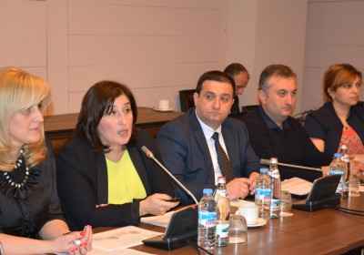 Members of the Council of Ethnic Minorities of the Public Defender met with CEC Chairperson