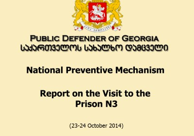 National Preventive Mechanism Report on the Visit to the Prison N3 (23-24 October 2014)