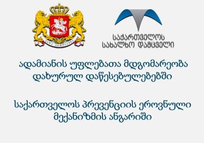 ადამიანის უფლებათა მდგომარეობა დახურულ დაწესებულებებში (პრევენციის ეროვნული მექანიზმის ანგარიში 2013)