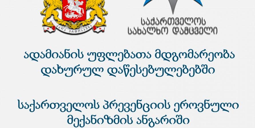 ადამიანის უფლებათა მდგომარეობა დახურულ დაწესებულებებში -  (პრევენციის ეროვნული მექანიზმის ანგარიში 2012)