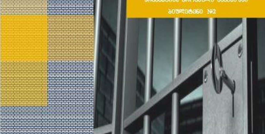 პრევენციის ეროვნული მექანიზმის კვარტალური საინფორმაციო ბიულეტენი N2