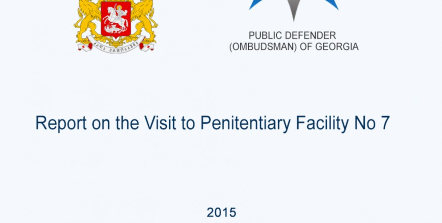 Report on the Visit to Penitentiary Facility No 7
