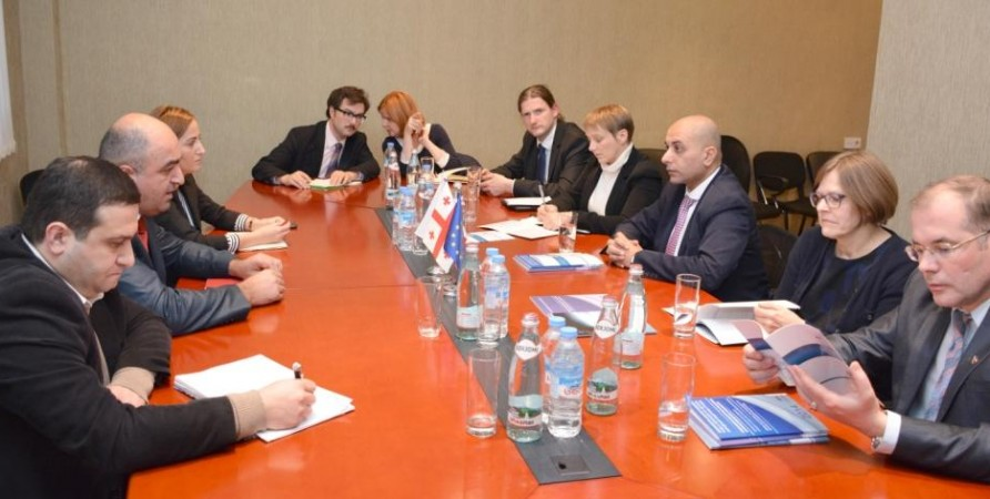 Public Defender Meets Members of Georgia-EU Parliamentary Association Committee