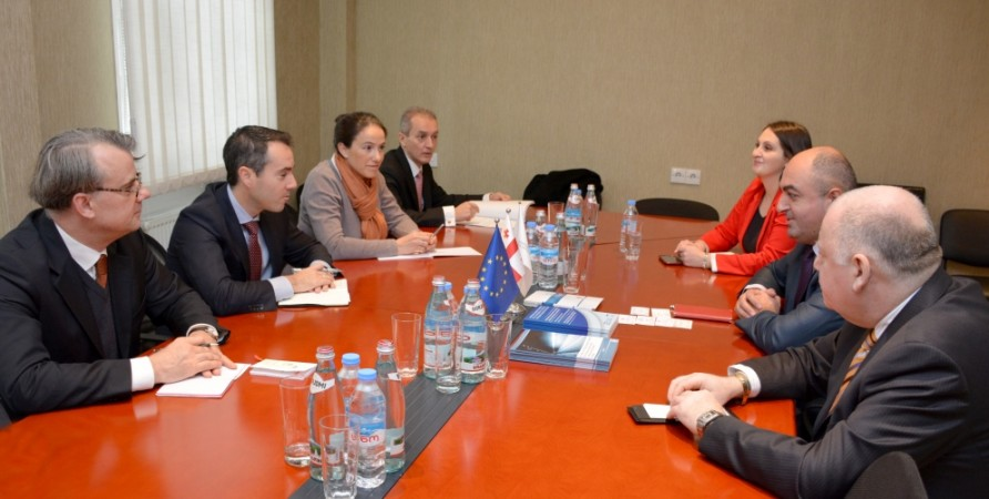 Public Defender Meets with Permanent Representatives of OSCE Member States