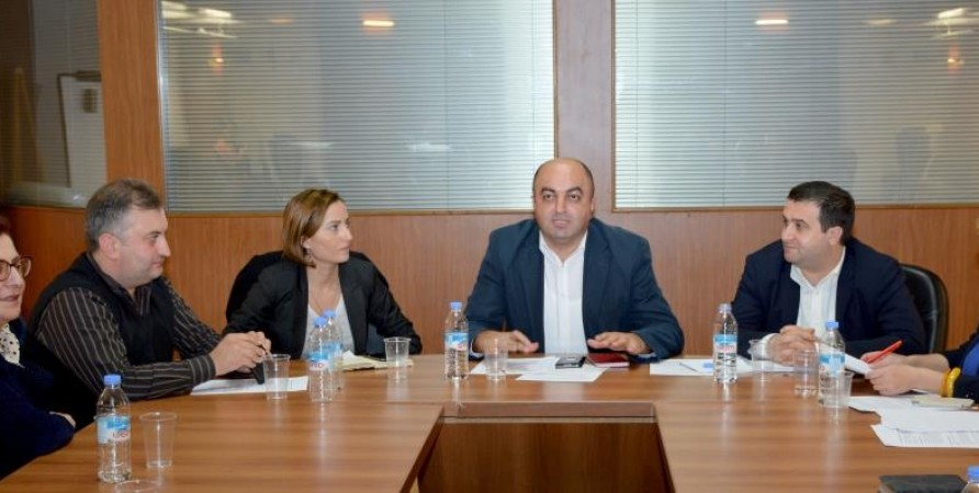 Meeting of Public Defender's Council of National Minorities