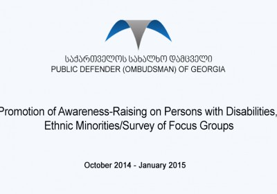 Promotion of Awareness-Raising on Persons with Disabilities, Ethnic Minorities/Survey of Focus Groups