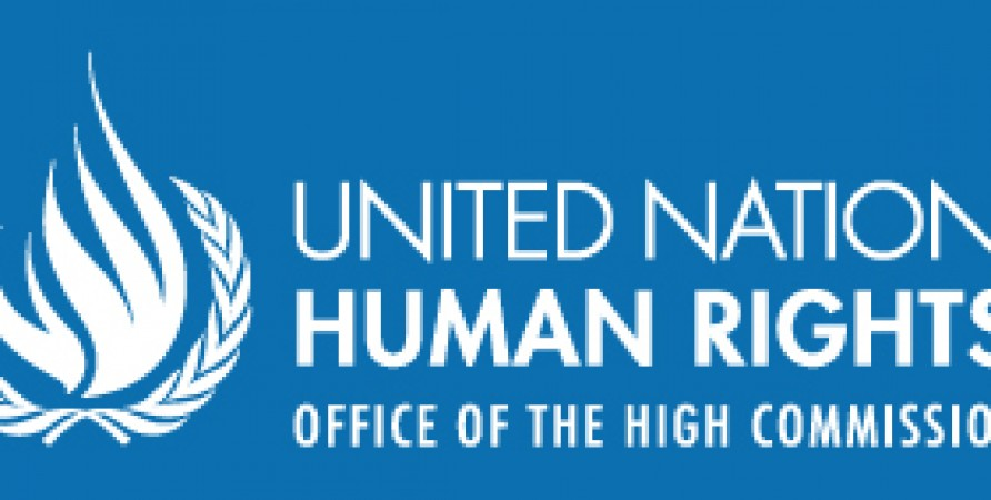 Public Defender Submits Interim Report to UN Committee on Elimination of Discrimination against Women